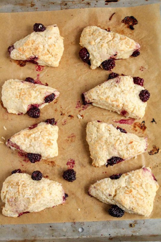 Vegan Blackberry Coconut Scones | katiebirdbakes.com